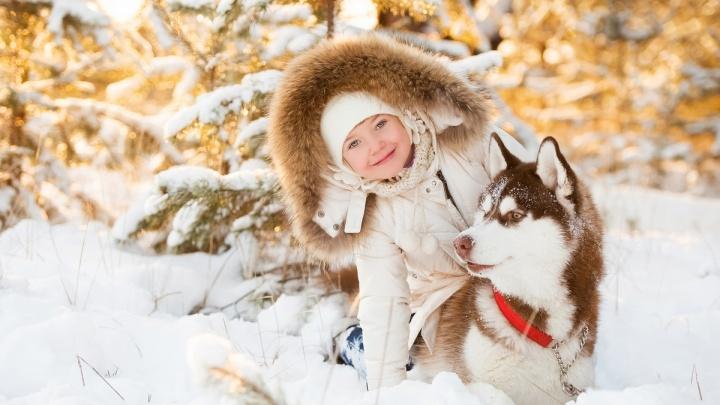 В новогоднюю ночь на Алтае туристы увидят салют в горах