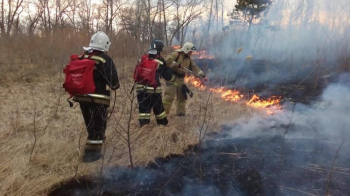 Леса Юргамышского района продолжают гореть