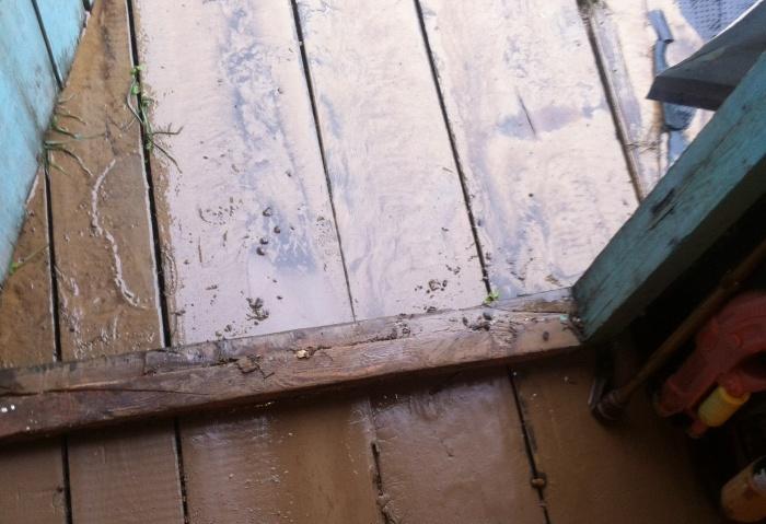 Полы в доме оказались покрыты слоем глины
