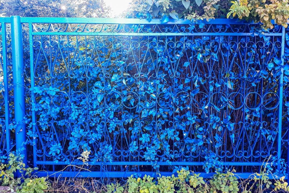 Растения выглядят ненастоящими под слоем краски