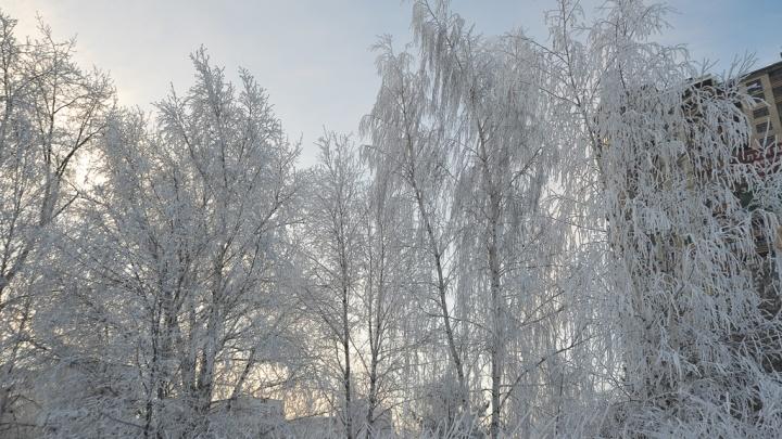 В Зауралье ожидается усиление морозов: температура может опуститься до -40 градусов