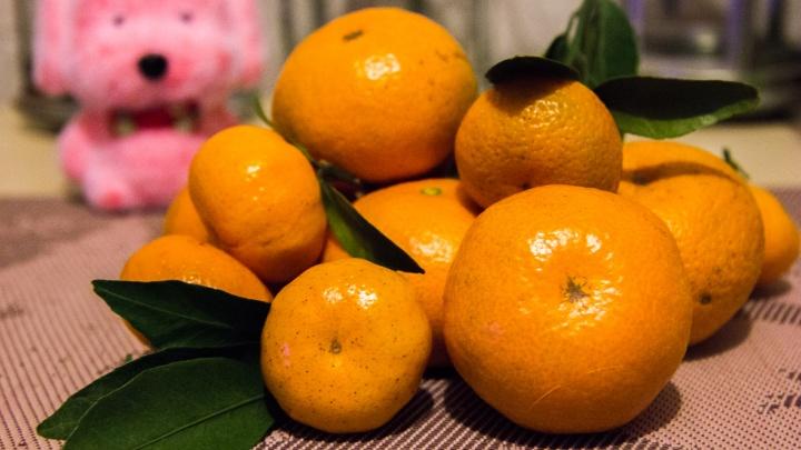 Город обжор: Новосибирск вошел в топ-5 регионов, где очень любят мандарины