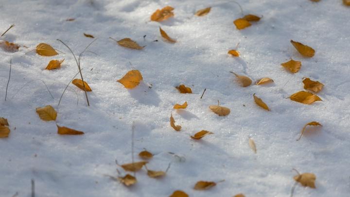Снегопад и гололедица: в Красноярск с концом рабочей недели идет ухудшение погоды