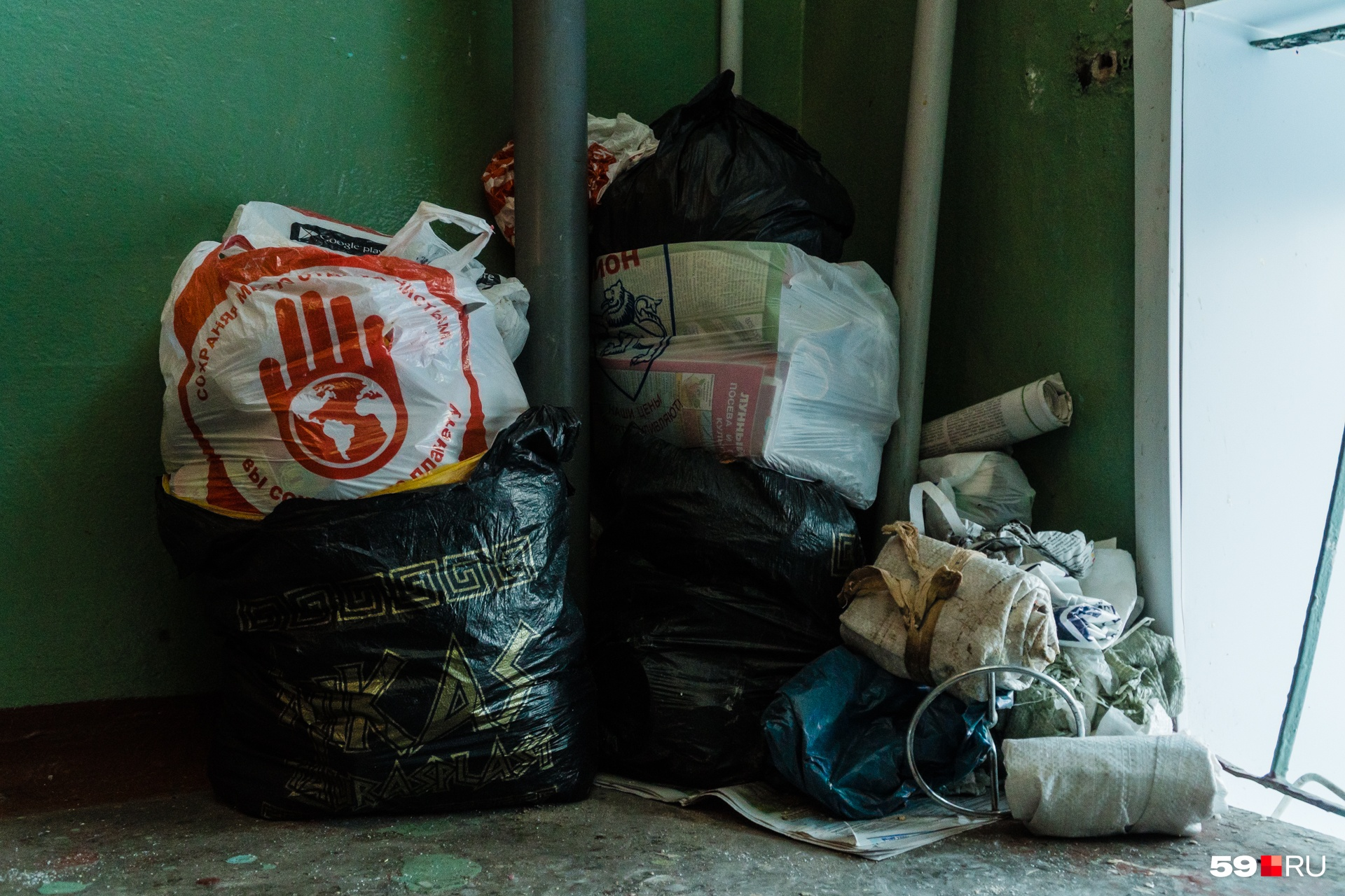 В подъезде тоже лежит мусор. Его Валентина Александровна принесла с помойки вчера вечером