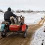 «Питаются в кафе»: в Волгоградской области горожане тратят на услуги в 1,5 раза больше, чем на селе