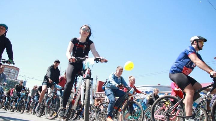 Ростовчанин взял велосипед напрокат и сдал его в ломбард