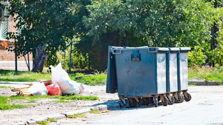 Сделаем город чистым и ухоженным: ростовчан зовут на общегородской субботник