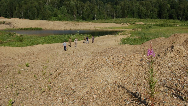 «Когда-то здесь была река»: золотодобытчики уничтожили земли новосибирского заказника