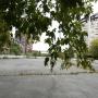 Лёд для детей и бизнеса: в Челябинске рядом с бором построят хоккейный корт