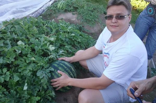 Жители Рыбинска выращивают на даче сладкие дыни и арбузы уже восемь лет