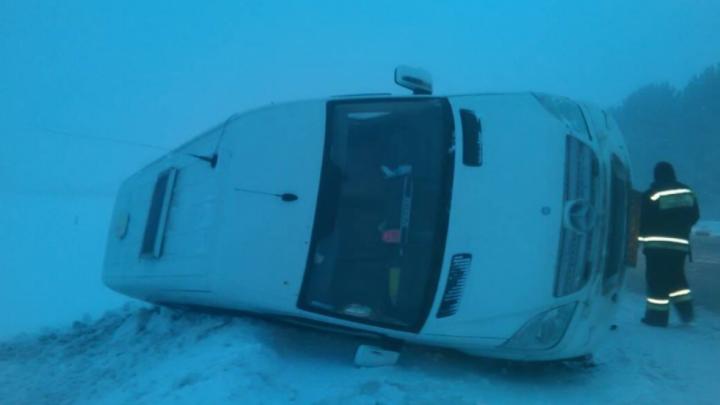 Пассажиры микроавтобуса, погибшие в ДТП под Тюменью, были гражданами Узбекистана