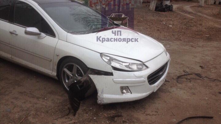 Собаки оторвали бампер машины на парковке при попытке достать спрятавшуюся кошку