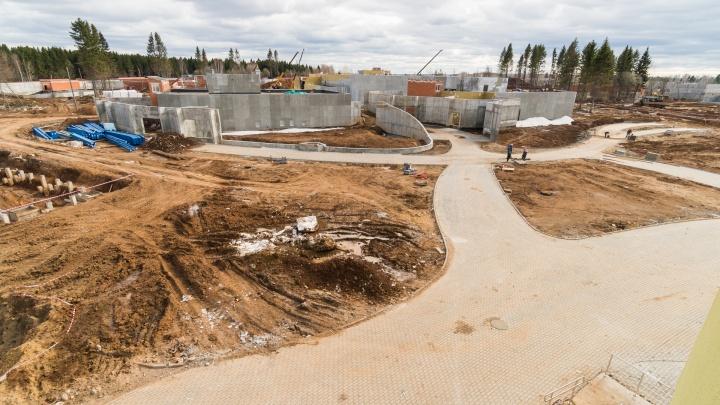 Власти потратят 8 миллионов рублей на обследование нового зоопарка Перми, построенного с нарушениями