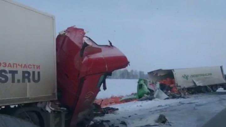На новосибирской трассе столкнулись две фуры: один из водителей погиб