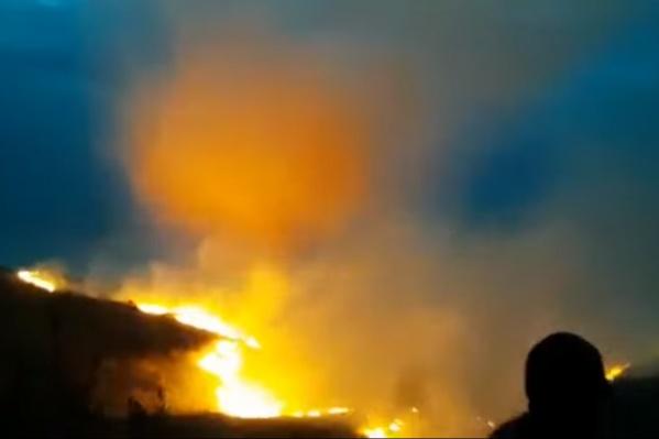 Огонь идет стеной, его тушат все: и МЧС, и местные жители