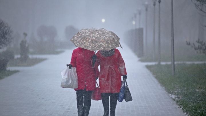Гололед и сильный ветер: в Башкирии объявили штормовое предупреждение