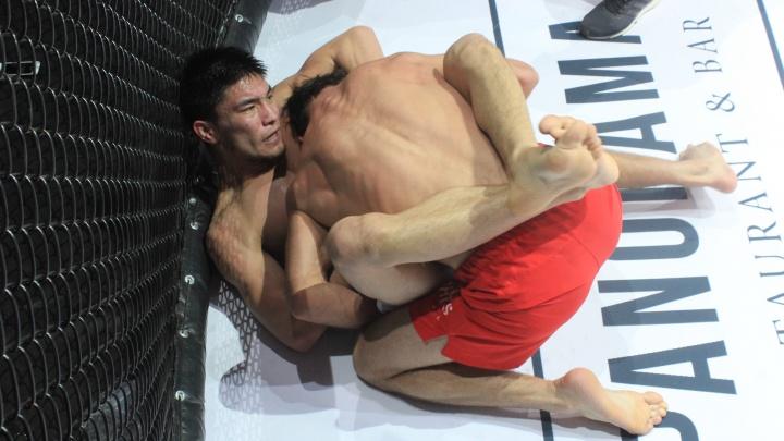 Ночь боёв в Омске: рэпер Джиган, супер-бой и бразильянка на ринге