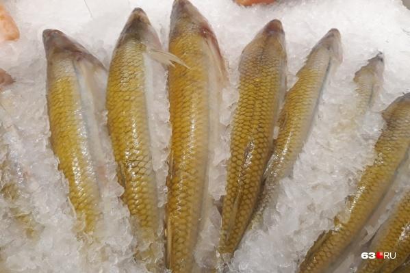 Нарушители хранили морепродукты неправильно