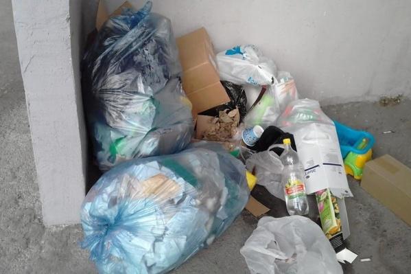 Договоры на вывоз мусора на текущий момент заключили только 2000 организаций — куда выбрасывают отходы остальные и кто платит за их вывоз?<br>