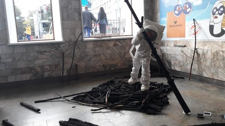 Немецкая художница презентовала проект о лесных пожарах в Сибири на площади Ленина