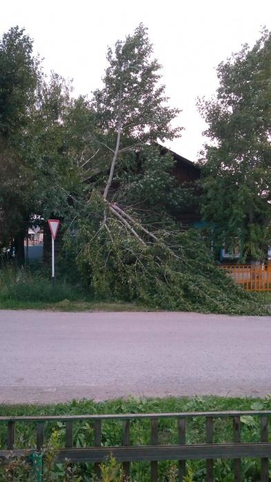 В Свердловской области шквалистый ветер повалил деревья и выбил окна в квартирах