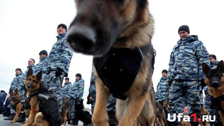 ФСБ предотвратила теракты в Башкирии в день выборов