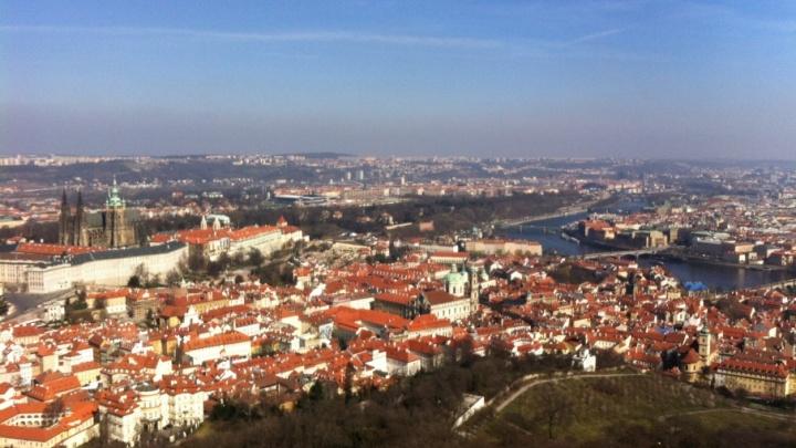 Чехи едут в Курган: гостям расскажут про картофель и зауральские напитки