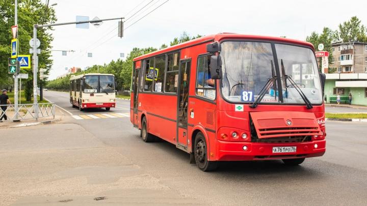 «Это не решит проблему»: урбанист разнёс идею сделать в Ярославле маршрутки общественным транспортом