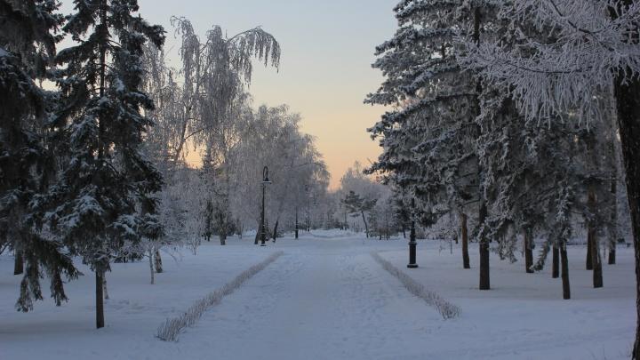 Короткие реки и минеральные берега: что вы знаете про Омскую область?
