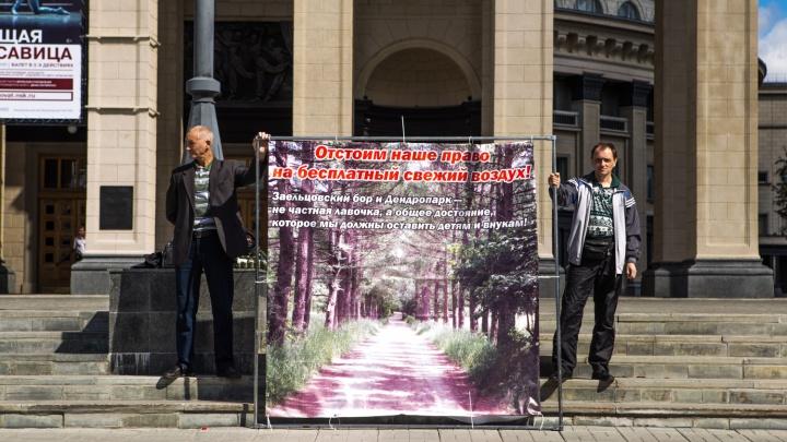 Шесть новосибирцев устроили на крыльце оперного пикет за бесплатный воздух