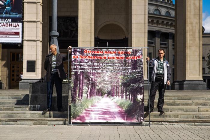 Активисты требуют перенести стройку парка развлечений из Заельцовского бора в другое место