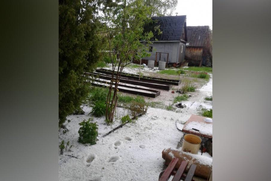 Зима и лето в одном кадре. И нет, это не фотошоп