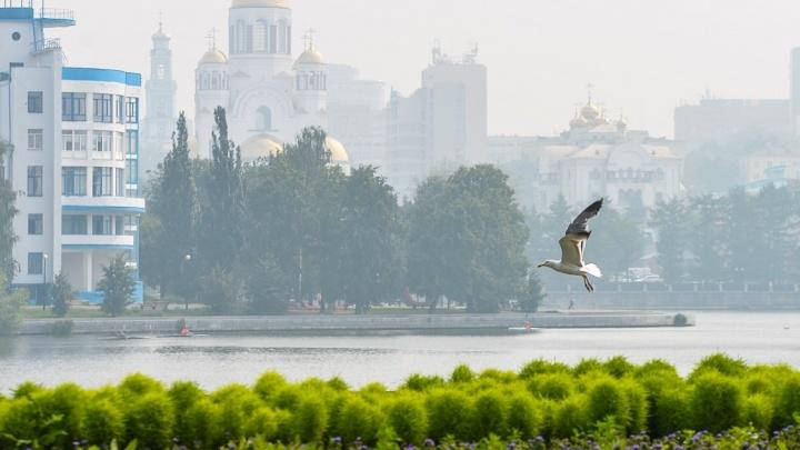 Метеорологи продлили предупреждение о смоге в Екатеринбурге