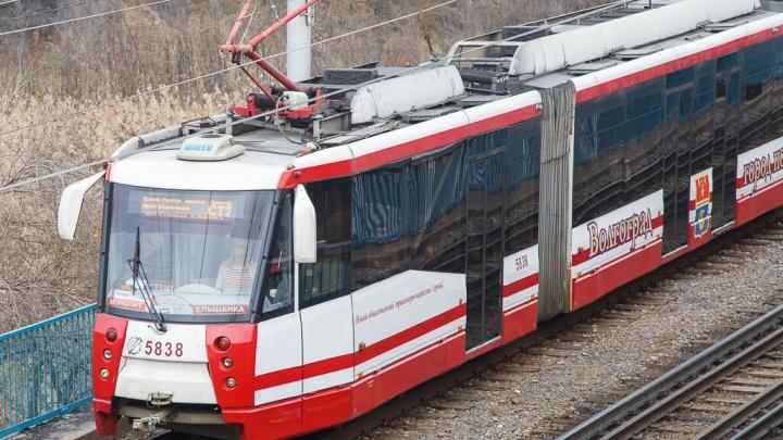 Вырос из-под земли: в Волгограде из-за бегуна в больницу увезли пожилую пассажирку трамвая