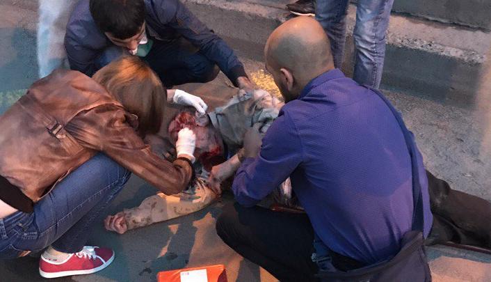 Новосибирец разбил лицо при падении с лестницы в Октябрьском районе