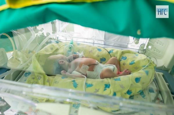 Общая рождаемость в крае снижается