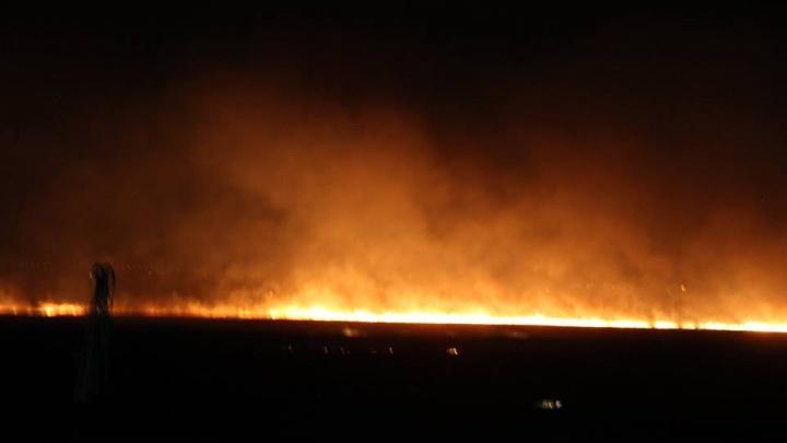 «За сутки уничтожено всё живое»: в Азовском районе разгорелся ландшафтный пожар