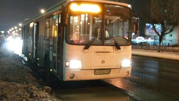 «Люди орали и жали на кнопки»: в Ярославле автобус протащил 15-летнюю девочку двести метров