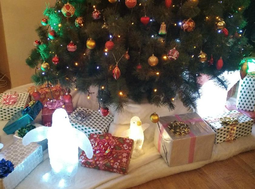 Новогодний подарок может стать для ребенка настоящим чудом