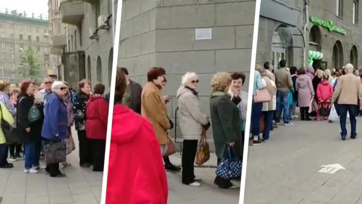 Новосибирцы выстроились в длинную очередь за икрой на площади Калинина