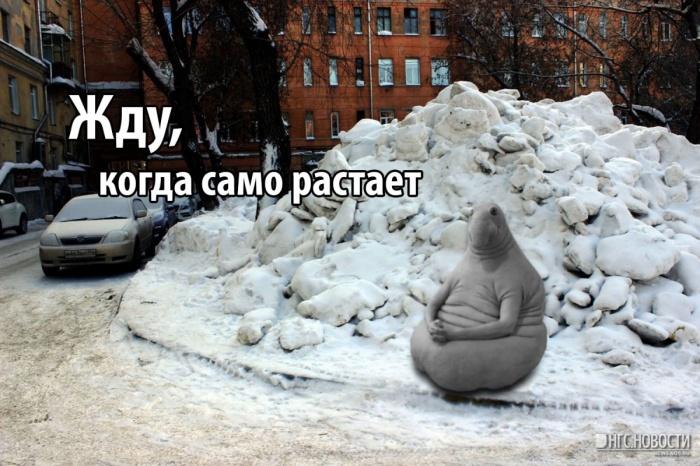 На этом коллаже НГС соединил Ждуна — популярный мем этого года, и ставший уже классическим мем «Само растает», связанный с Владимиром Городецким