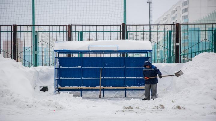 «Темп недостаточный»: мэр потребовал решить проблему со снегом в Новосибирске за 1,5 недели
