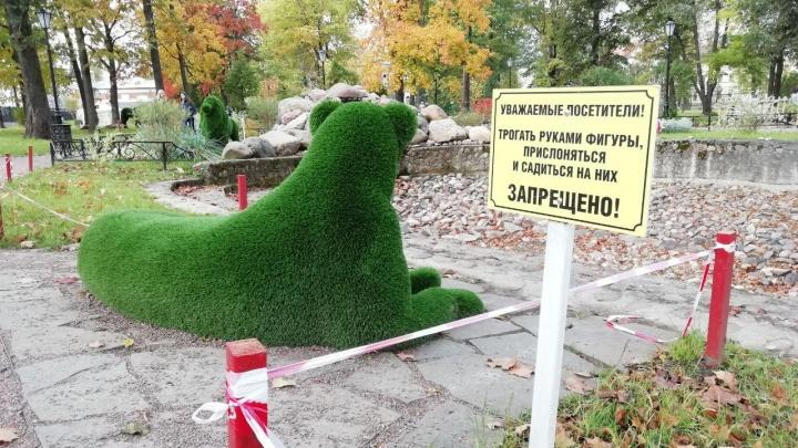 Сад строгого режима: в Рыбинске создали городской парк, где ничего нельзя