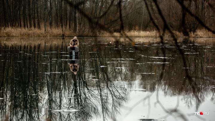 50 оттенков декабря в Петропавловском парке: гуляем по прекрасному и печальному местечку Ярославля