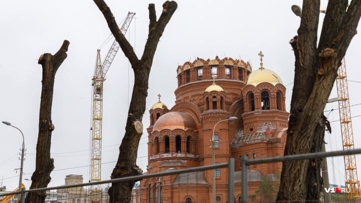 «Наши любимые брусчаточные поля»: в центре Волгограда вырубили сквер за храмом Александра Невского