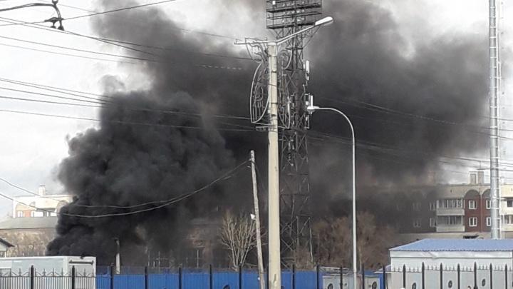 «Хорошо полыхает»: черный дым от горящего мусора и травы испугал красноярцев