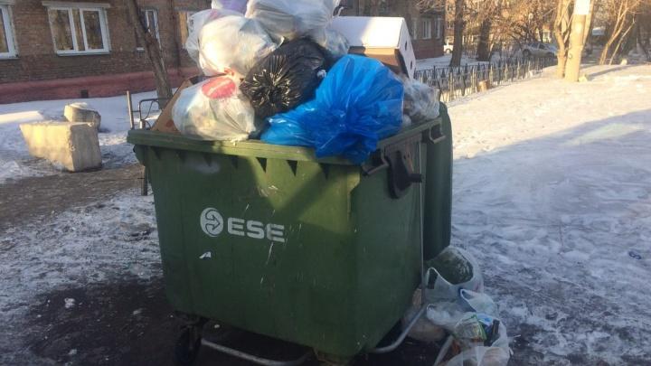 Больше четырех тысяч тонн отходов вывезла Красноярская рециклинговая компания за прошедшую неделю