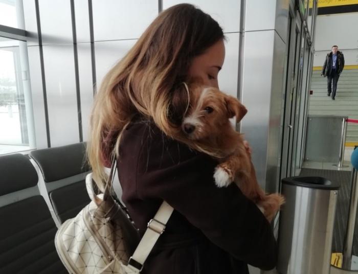 Девушка выкупила щенка за сто юаней