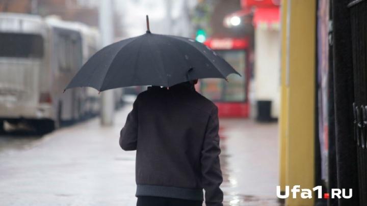 Тепло и дождливо: синоптики дали прогноз погоды в Башкирии на 19 апреля
