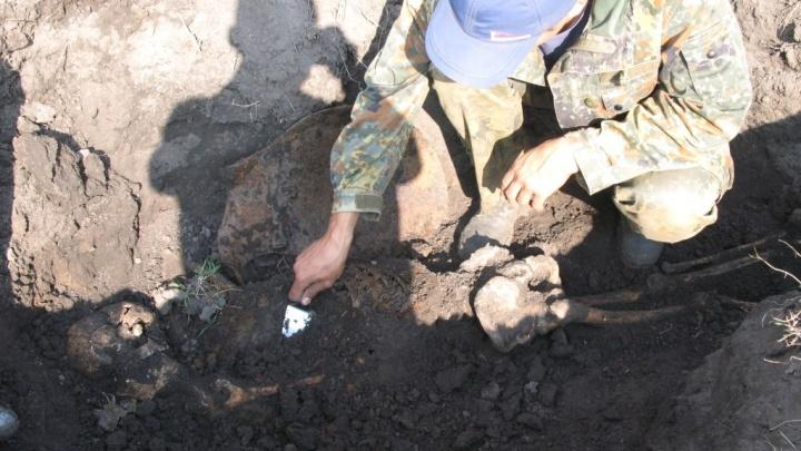 На Украине нашли останки пилота из Полазны, погибшего во время войны